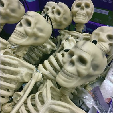 skeletons-sold-by-bulk-bin-full-3
