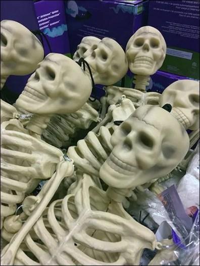 skeletons-sold-by-bulk-bin-full-3