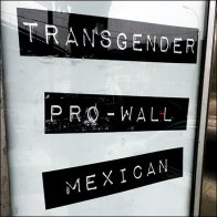 Transgender Pro-Wall Mexican Voter Politics