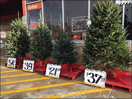 Christmas Tree Pricing Sign Holders
