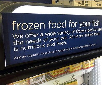 Why Buy Frozen Fish Food For Your Fish?