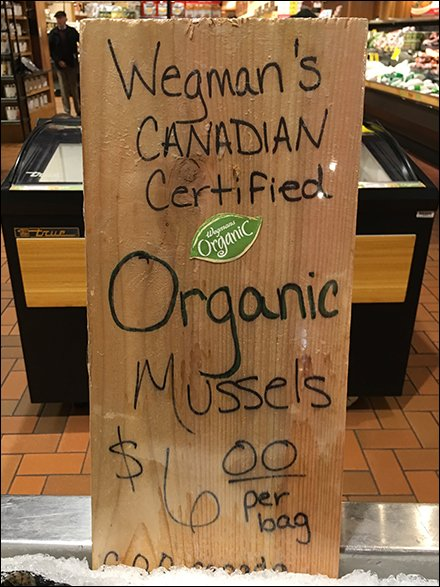 Canadian-Certified Organic Hand-Lettered Mussels