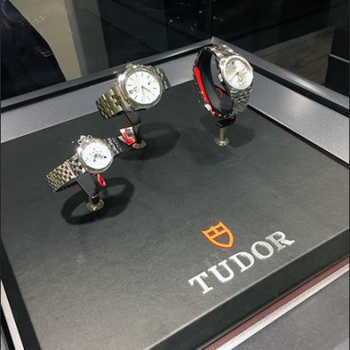 Tudor Wrist Watch Museum Case 3