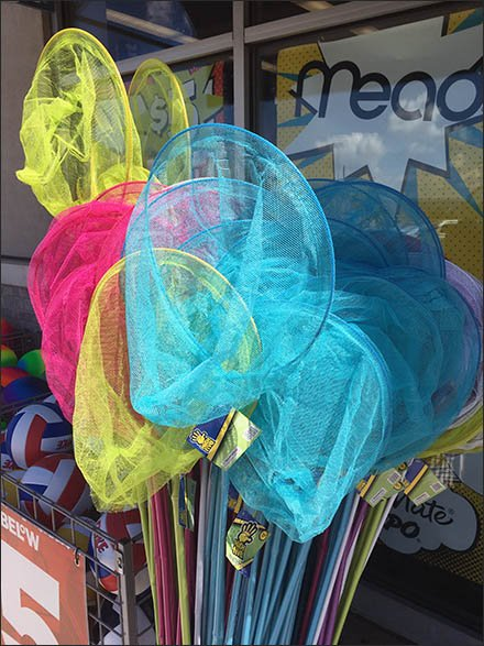 Butterfly Nets By The Branded Barrel-full