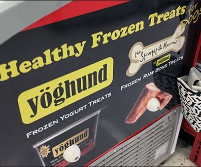 Yoghund Cooler For Frozen Dog Treats