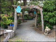 Home of The Gnomes Garden Center Branding