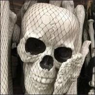 Do-It-Yourself Skeleton Mesh Bag Merchandised