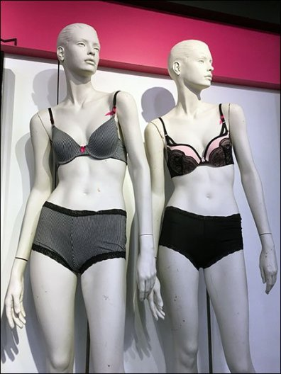 Maidenform Bra Brands A Department