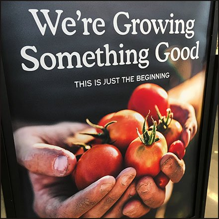 Whole Foods Store Fixtures - Whole Foods And Amazon Growing Something Good