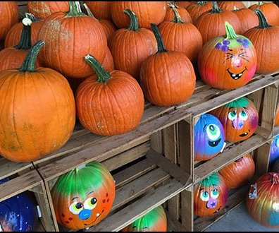 Do-It-Yourself Pumpkin Decorating Supplies