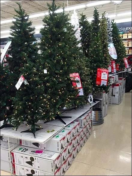 Christmas Tree Runway of Boxed Backstock