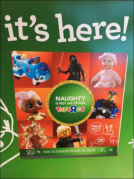 Naughty Is Not An Option Christmas Catalog