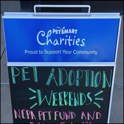 Pet Charity Chalkboard Sidewalk Sign