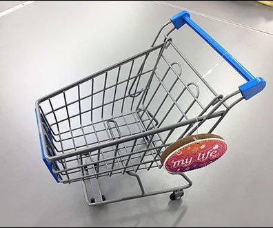 WalMart Lifestyle Branded Shopping Cart