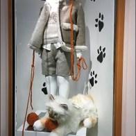 Pet Propped Museum Case 3