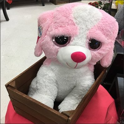 Hug&Luv Plush Crate Valentine's Day Strategies