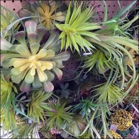 Fresh Picked Greens Wreath Merchandising
