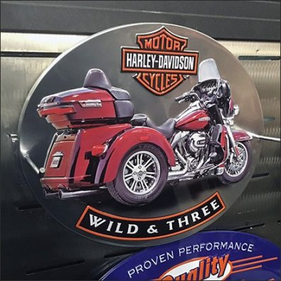 Harley-Davidson Stainless Steel Slatwall Feature