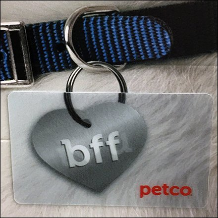 Gift Card Shopping For Pets At Petco