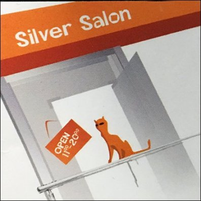 Kara Silver Salon Business Card Hours