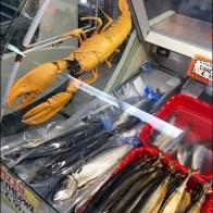 Live Lobster Prop For Seafood Case