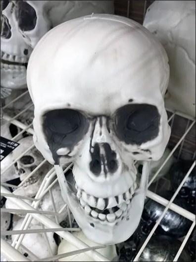 Skull Endless Basket Merchandising
