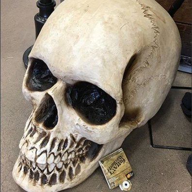 Giant Haunted Living Halloween Skull