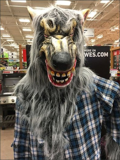 Werewolf Stalks Center Store Retail