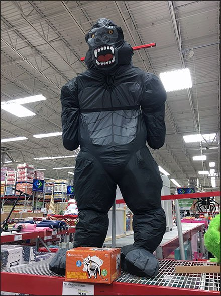 Giant Halloween Gorilla atSams Club