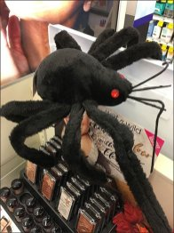 Wet N Wild Cosmetics Halloween Spider