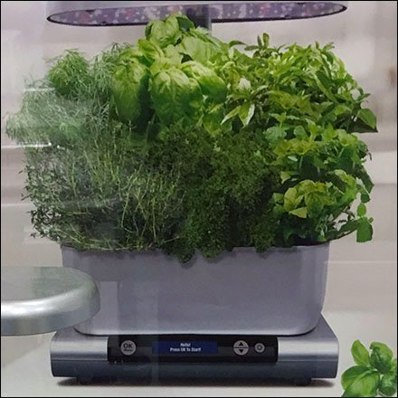 AeroGarden In-Home Garden System
