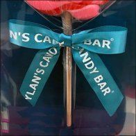 Dylan's Candy Bar Lollipop Ribbon Bow Branding Square