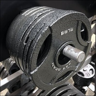Fitness Gear Cast Iron Weight Plate Angled Rack Square1