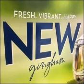 New Gingham Script Branding Statement