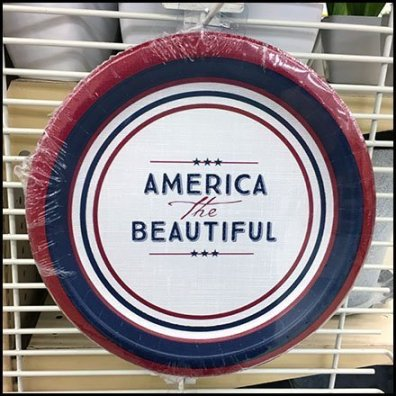America The Beautiful Paper Plate PowerWing