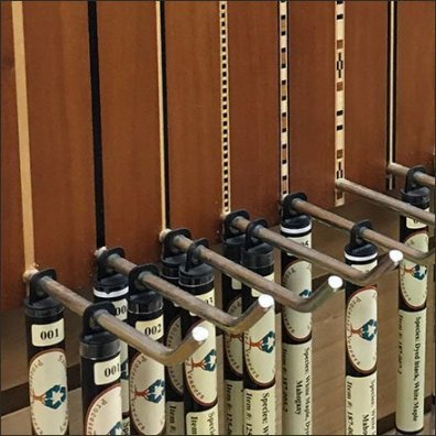 Wood Inlay Borders Multi-Hook Display