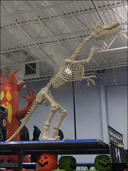 Halloween Dinosaur Skeleton Ups-The-Ante