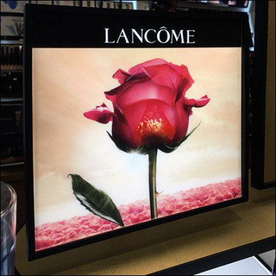 Complete Lancome Countertop Cosmetics Display