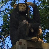Monkey Crossing Guard Lookout Prop