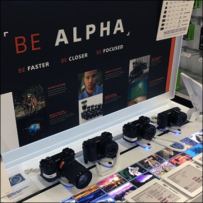 Sony Alpha Mirrorless Camera Display