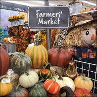Michaels Indoor Farmers Market Motif