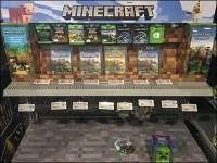 Minecraft Gaming Display
