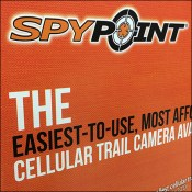 SpyPoint Trail Camera Pallet Display