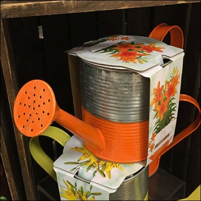 Floral Watering Can Garden Accessory