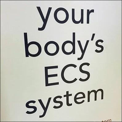 Hemp-CBD ECS System Merchandising Message