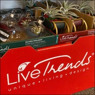 Live-Trends Freestanding Corrugated Display