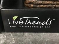 Live-Trends Zen Plant Pair Pack