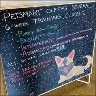 PetSmart Training Class Chalkboard Easel