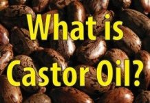 A Brief Introduction To Castor Oil, One Of The Most Prolific Oils In History