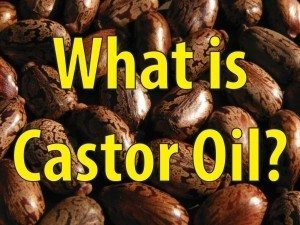 A Brief Introduction To Castor motor Oil, One Of The Most Prolific Oils In History